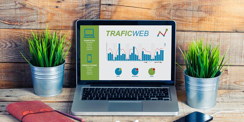 trafic pour son site web