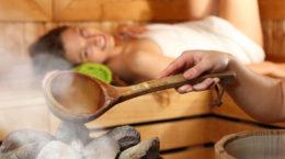 Achat de sauna