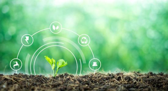 Formation développement durable